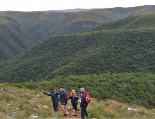 Addo Hiking Tour