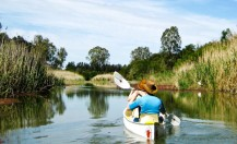Addo River Safari